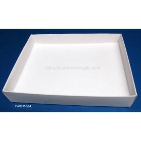 Casier carton 3950-04